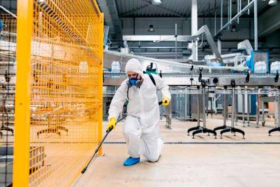 Empresa dedicada al exterminio total de insectos consultenos